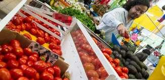 Aumenta precio de cebolla y jitomate en Nayarit por bajas temperaturas